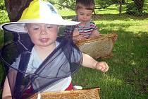 Martin a Honzík Chmelovi o včelkách znají více zajímavostí, než jejich vrstevníci. Ti se je mohou dozvědět v sobotu v Benešově na farmářském trhu na Masarykově náměstí.