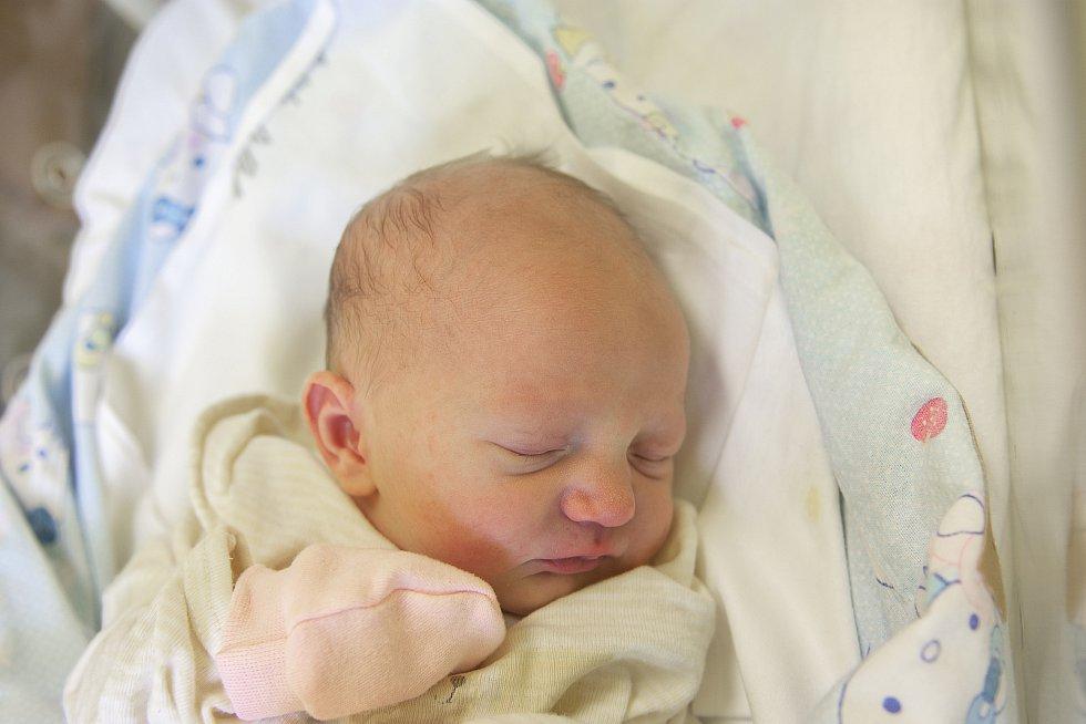 Nela Havelková z Poděbrad se narodila v nymburské porodnici 24. února 2021 v 11.40 hodin s váhou 2830 g a mírou 46 cm. Z prvorozené holčičky se radují maminka Lenka a tatínek Michal.