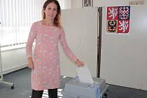 Druhý den závěrečného kola senátních voleb ve 41. senátním obvodu v Neveklově.