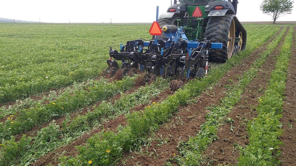 Opatření proti suchu: metoda strip-till vhodná pro suché oblasti a svažité pozemky zabraňuje erozi a zvyšuje významně udržení vody v půdě