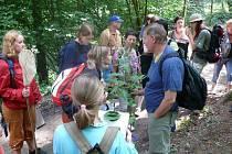 Ilustrační foto: Fotka z vycházky Podblanickem můžou účastníci  posílat do fotosoutěže Krajinou pod Blaníkem