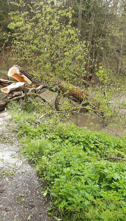 Strom padlý na lávku.