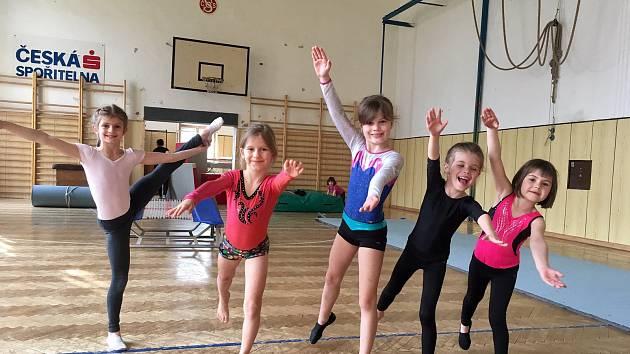 Především malé děti se sešly v sokolovně na cvičení pořádaném Domem dětí a mládeže Benešov.