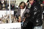 Sobotní farmářské trhy v Benešově nabídly chuťový i estetický zážitek.