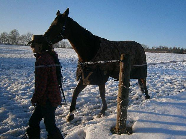 Chovatelka Martina Moricová s jedním z koní, o které se stará.