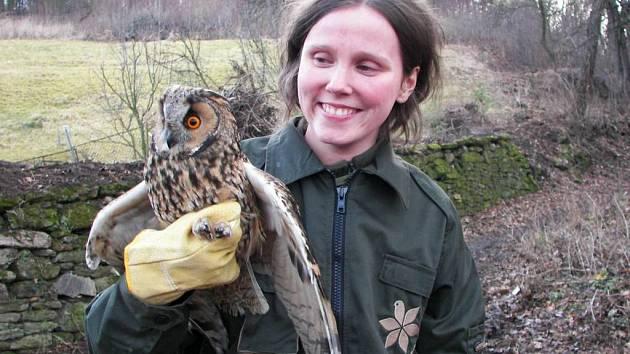 Lenka Šafránková vypouští kalouse ušatého po rekonvalescenci zpět do přírody