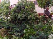 Následky bouřky ve Vlašimi.