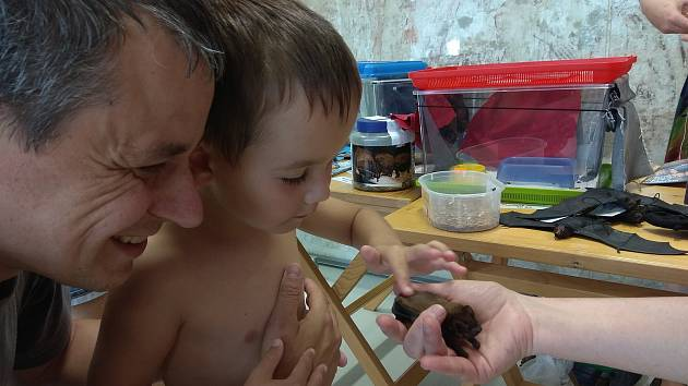 O poznávání života netopýrů byl ve Vodním domě v Hulicích velký zájem.