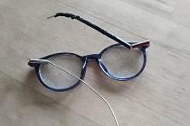 Půlročním štěnětem německého boxera rozžužlané brýle.
