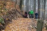 Lesní stezka pro pěší. Ilustrační foto.