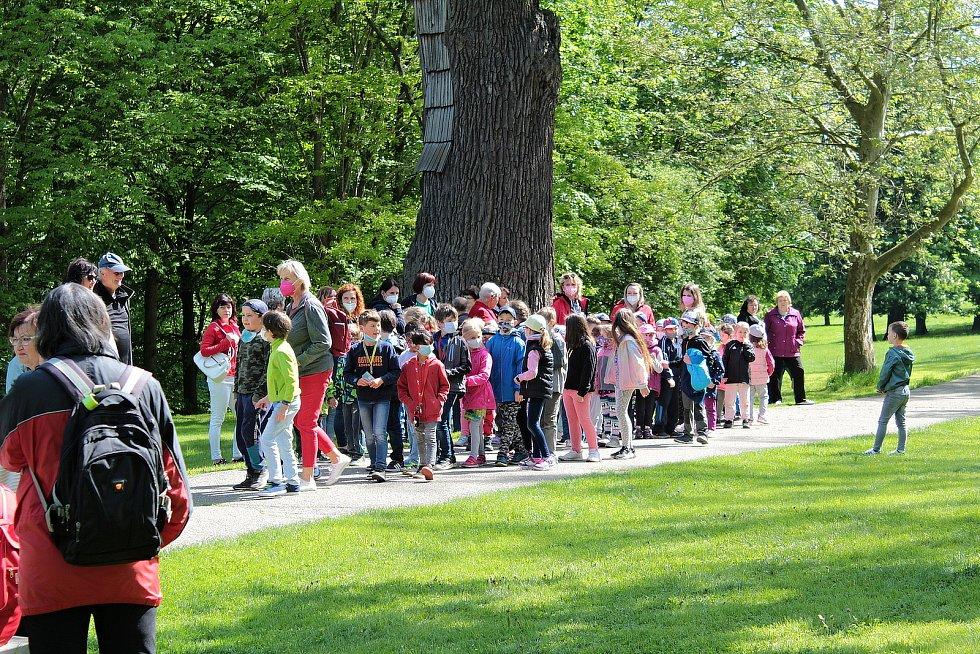 Setkání u dubu nazvaného Děd Vševěd ve vlašimském zámeckém parku.