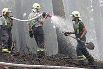 Hasiči musí vyjíždět v období sucha například k požárům lesa.