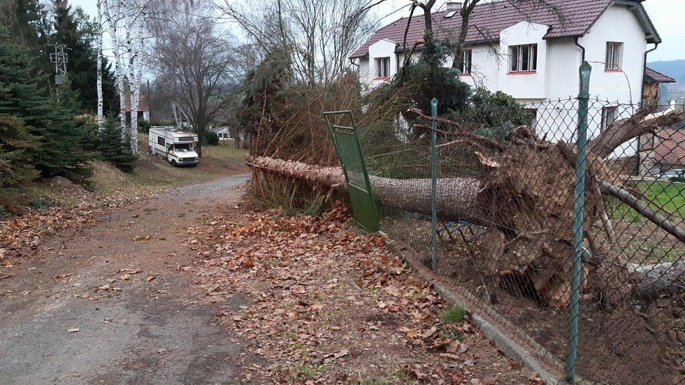 Černýš na Benešovsku-vyvrácený strom na plot a cestu u rodinného domu.