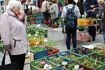 Z farmářského trhu v Benešově. Archivní foto.