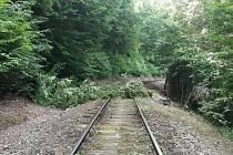Popadané stromy způsobily komplikace také na železniční trati.