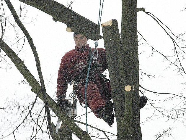 Strom usmrtil třicetiletého muže.