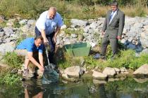 Středočeský kraj vyhověl žádosti rybářů o pomoc se záchranou ohrožené populace ryb