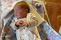 V hořovické porodnici se 4. března narodil Kateřině Jiráskové a Antonínu Procházkovi syn Toníček Procházka. S mírami 3,6 kilogramů a 49 centimetrů bude bydlet ve Královu Dvoru.  Vítej do velké rodiny! foto: rodinný archiv