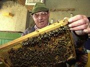 Schůzka svolaná ředitelem KVS Zdeňkem Císařem, která se týkala rapidního úhynu včel