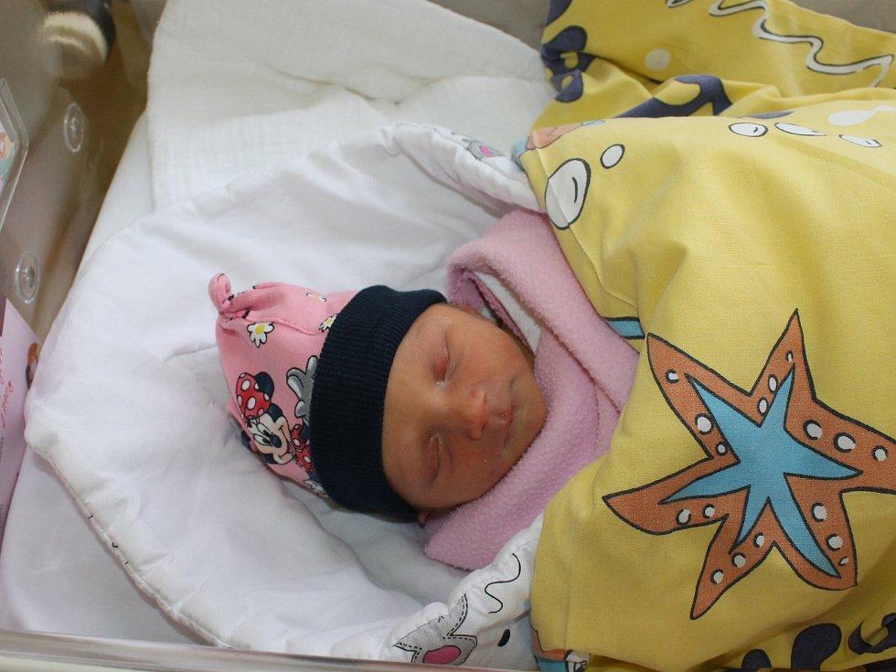 Adélka Ederová se manželům Janě a Romanovi narodila 28. ledna 2020 v 8.47 hodin, vážila 2790 gramů. Doma v Praze na ni čeká sestřička Deniska (6).