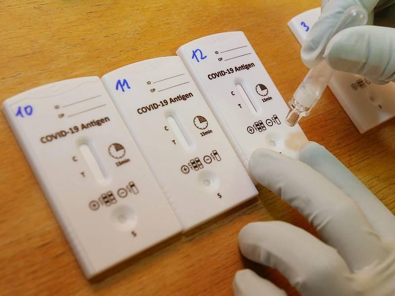 Testování na koronavirus pomocí antigenních testů. Ilustrační foto.
