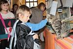 Předvánoční prodej a prezentace rukodělných výrobků na kreativním jarmarku v aule benešovského gymnázia.