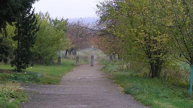Jabloňová alej, v níž došlo k přepadení cyklistky