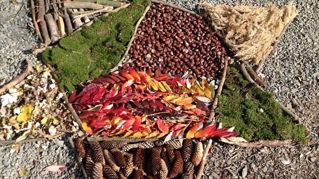 Lesní mateřská školka, podzimní mandala