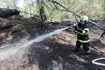 Ještě minulý týden vyjížděli hasiči několikrát denně k požárům lesa.