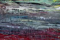Jeden z abstraktních obrazů Zdeňka Paďoura.