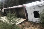 Nehoda nákladního auta s prasaty u Trhového Štěpánova.