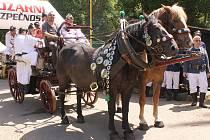 Hasičský den v Konopišti si přítomní užili různorodě. Sledovat mohli soutěžení hasičských sborů či vystoupení nejkrásnějších hasiček.