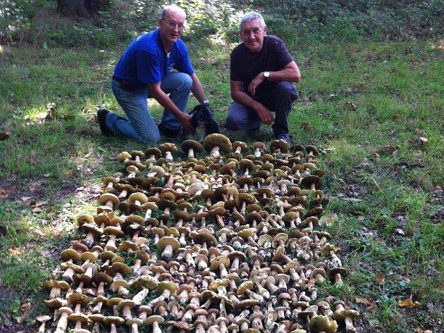 Bohumil Zeman a Pavel Říha si z lesa u Benešova přivezli 370 hřibů.