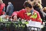 Prostory chovatelského areálu nad Voticemi nabízely především nejrůznější druhy venkovních i pokojových květin, ale i háčkovaných drobných výrobků a zajímavou podívanou na neprodejní expozici bonsají.