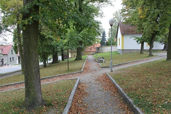 Ošetřováním stromů v centru Jankova, i v přidružených obcích, se nyní zabývají odborníci.