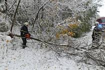 Státní svátek v podání dobrovolných hasičů z Votic.