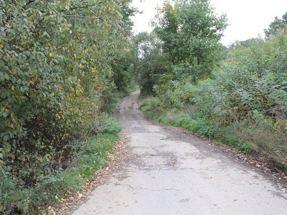 Cesta k benešovské střelnici na Kavčíně.