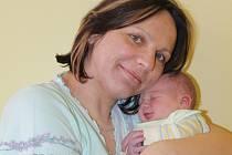 Čtvrtek 6. března je šťastným dnem pro Andreu Hošnovou a Pavla Dvořáka z Násilova. V 8.29 se jim narodila 3,36 kg vážící a 50 cm měřící dcera Sofie.  Holčička má ještě sestry Pavlínu (15) a Moniku (19).
