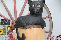 Týnecký černý kocour.