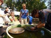 Cesta za zlatem oslovila rekordní množství návštěvníků.