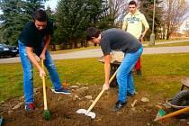 Práce žáků ZŠ Vorlina při projektu Arboretum.