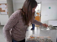 Zakoupením bábovky k svačině pomohli zraněným živočichům.