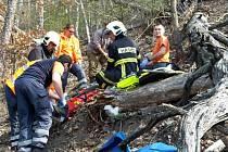 Záchrana muže, na kterého při kácení v těžko dostupném terénu spadl strom.