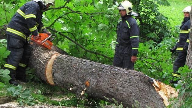 Hasiči zasahovali u spadlého stromu pod Karlovem