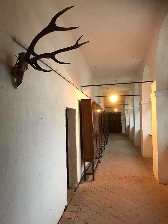 Vetešník Pavel Kuře buduje ve svém zámku v Martinicích u Dolních Kralovic vlastenecké muzeum.