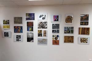 výstava mikrofotografií