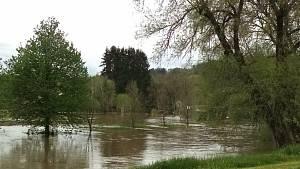 Rozvodněná řeka Blanice v Ostrově