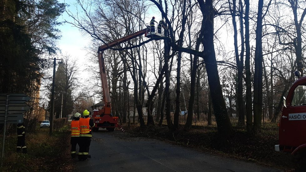 Osov na Berounsku-hasiči motorovou pilou odřezávají strom zaklesnutý do jiného stromu.