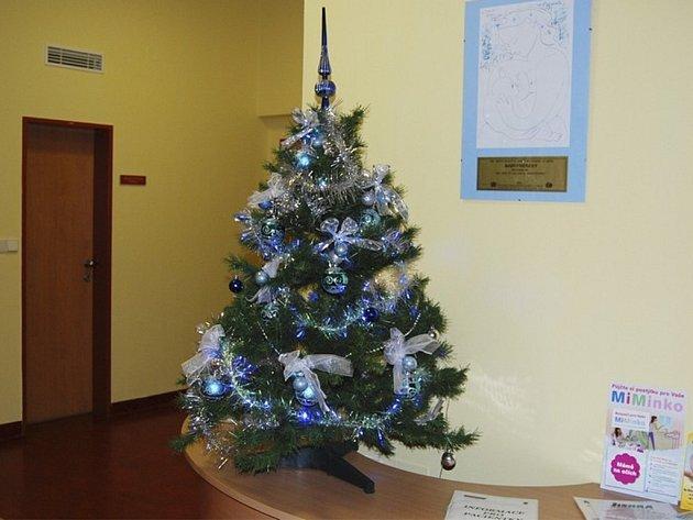 Takto vypadá vánoční výzdoba v benešovské porodnici.