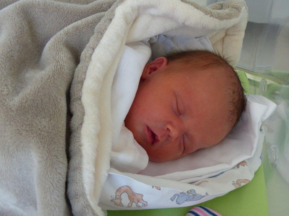 Sára Adelová se narodila 22. února 2021 v kolínské porodnici, vážila 3300 g a měřila 49 cm. V Sadské se z ní těší bráškové Petr (10), Vítězslav (7) a rodiče Monika a Petr.